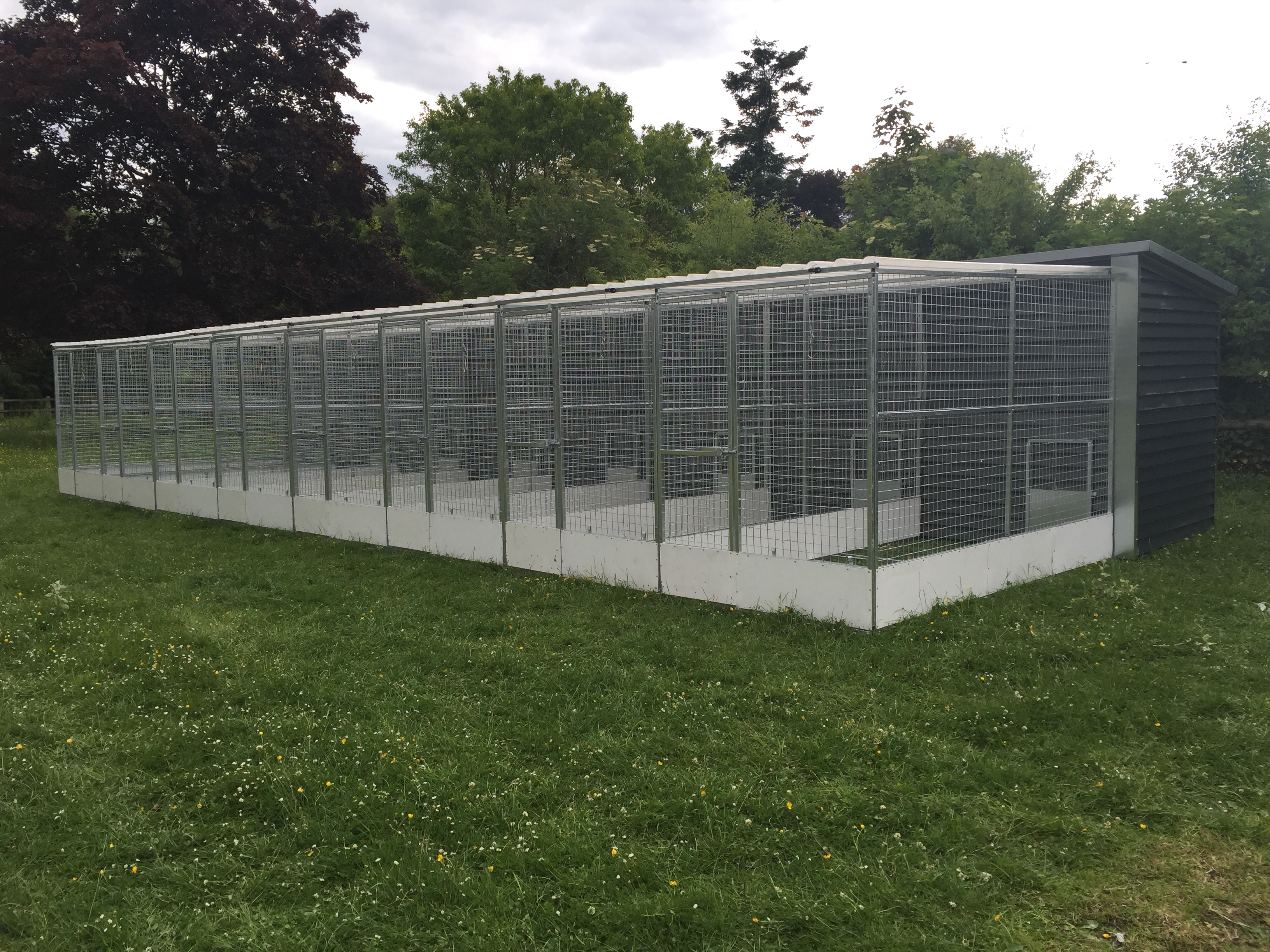 Dog Cages Uk Types